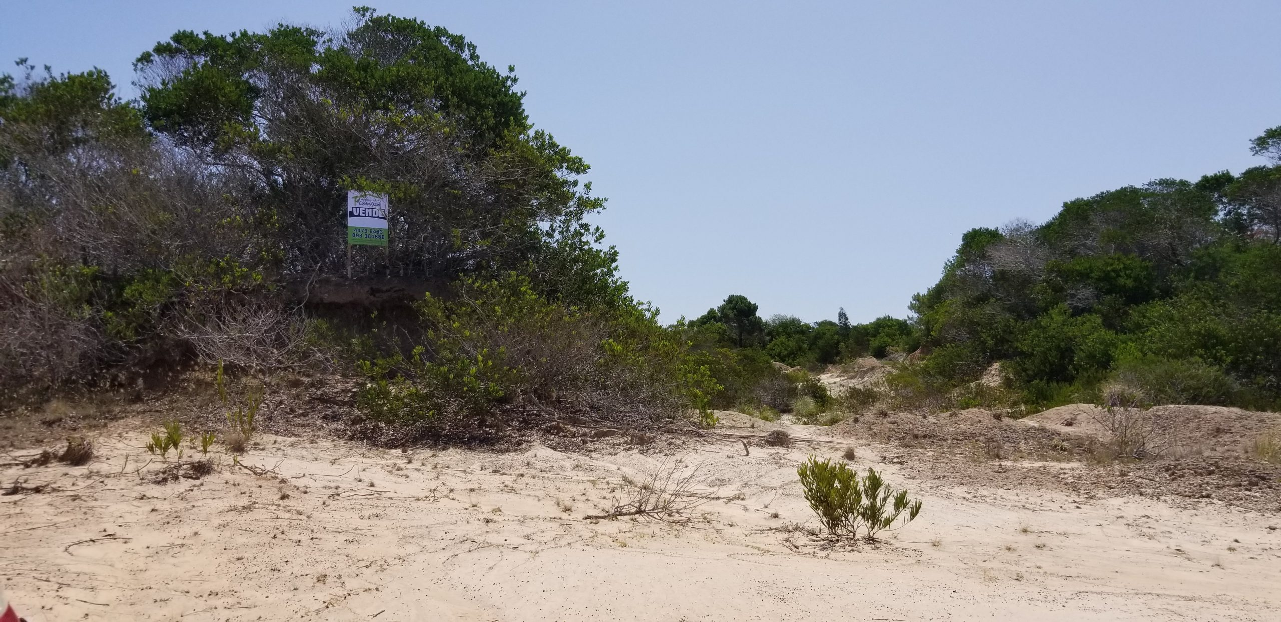 Vendo 2 terrenos en Punta Ruba .           Superficie 600 M2